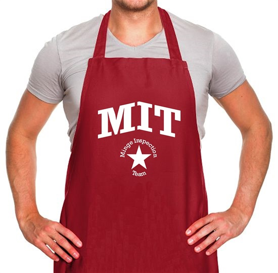 Minge inspection team Apron