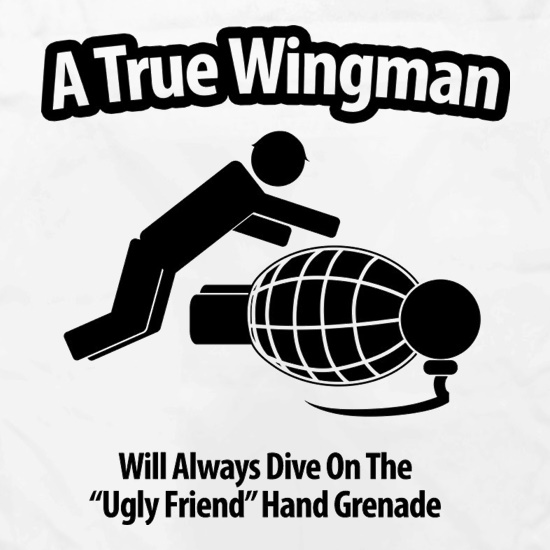 A True Wingman Apron