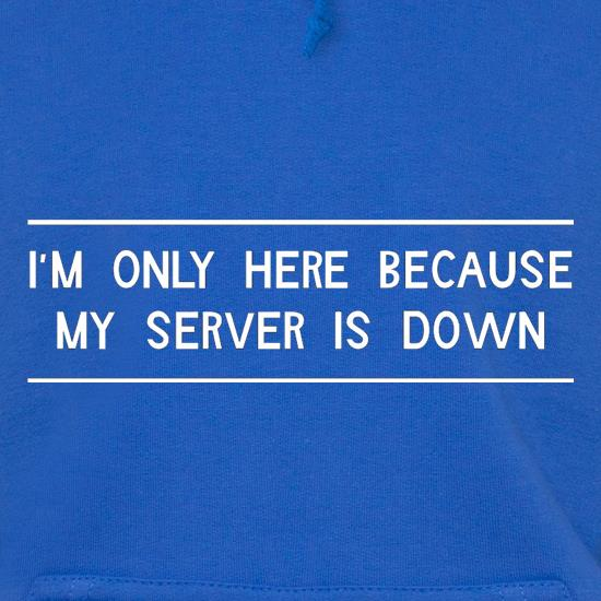 I'm Only Here Because My Server Is Down Hoodies