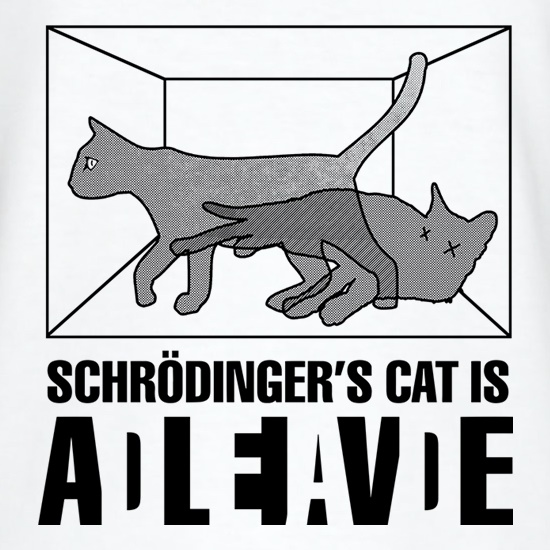Schrodinger's Cat Box t-shirts