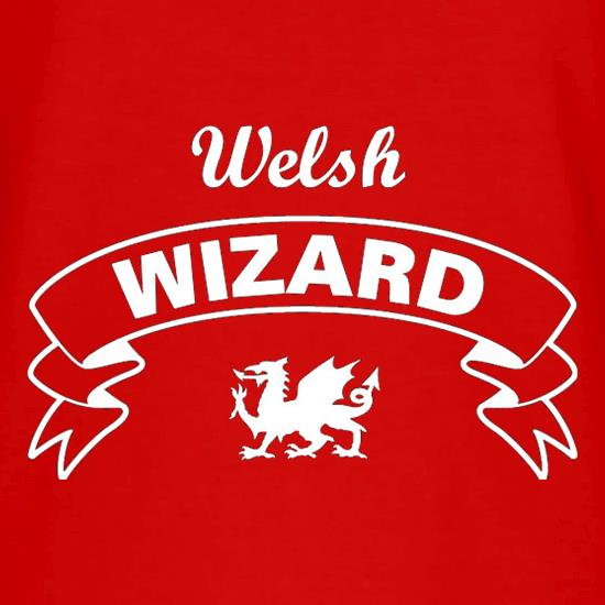 Welsh Wizard V-Neck T-Shirts
