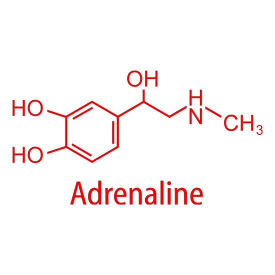 Adrenaline t shirt