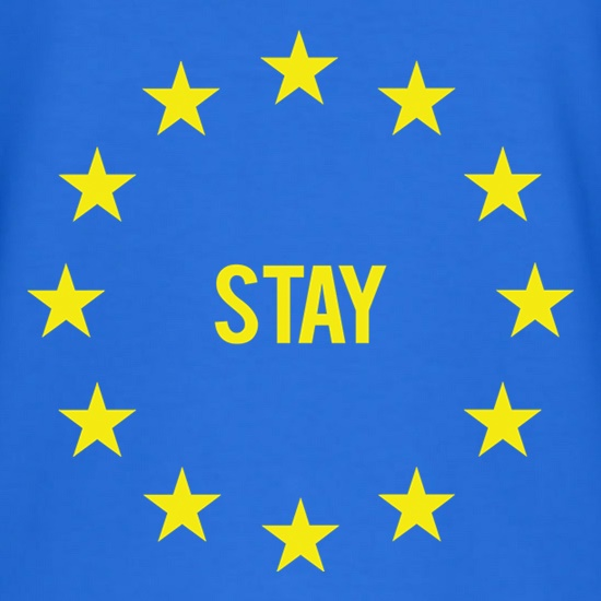 Vote EU Stay t shirt